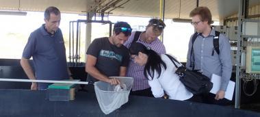 Les auditeurs australiens au centre technique aquacole de l'Adecal Technopole, à Boulouparis.