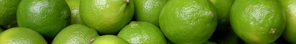 et_export-limes.png